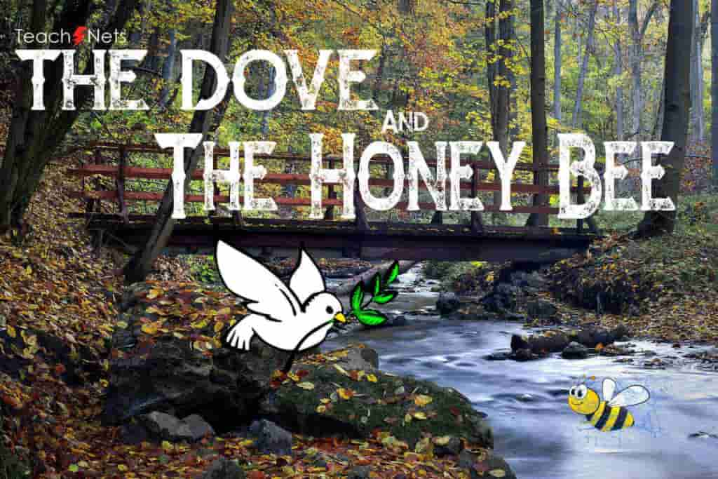 The Dove and The Honey Bee | Moral Stories In English