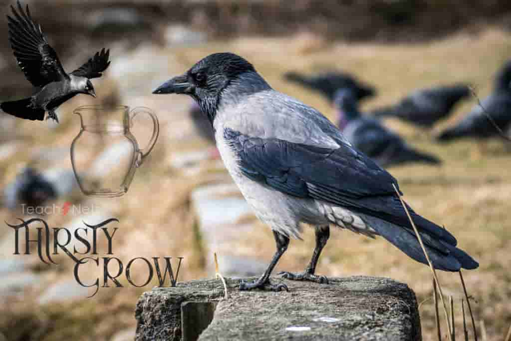 Thirsty Crow Story In English Writing | Pyasa Kauwa