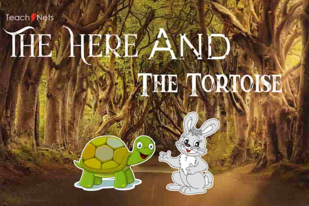 The Tortoise and the Hare English Story For Kids