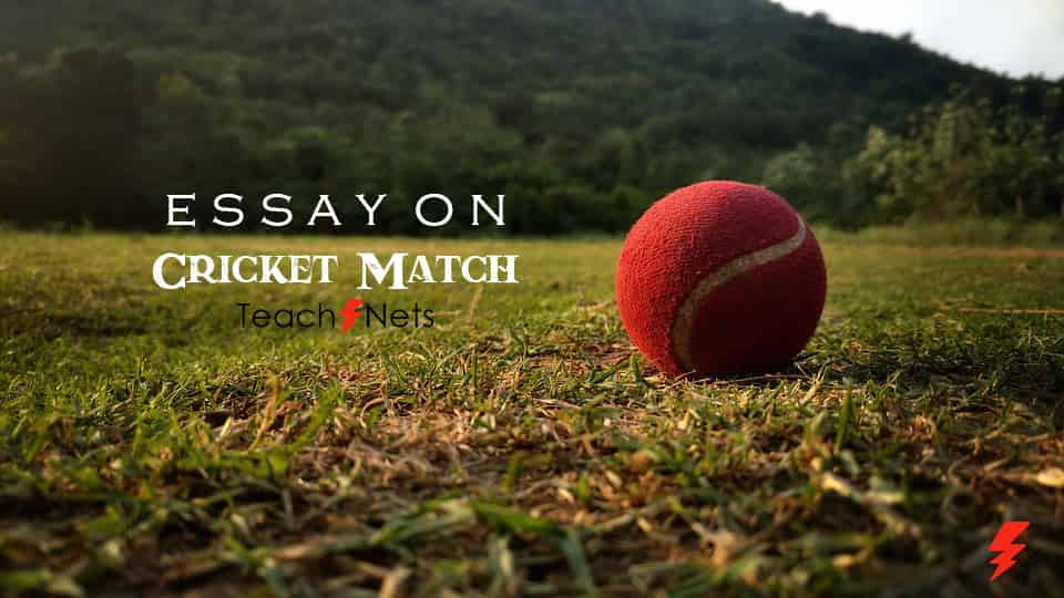 Essay on Cricket Match - An exciting cricket match